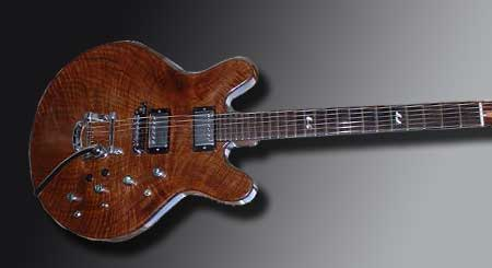 Custom Electric Guitar by Alan Arnold