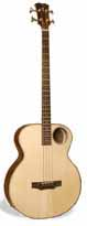 Acoustic Bass Custom Guitar