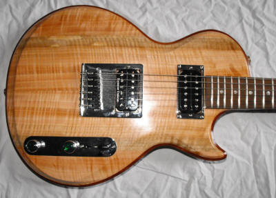 Custom Guitars by Alan Arnold Guitars
